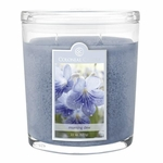 Morning Dew 22 oz. Oval Jar Colonial Candle | 22 oz. Oval Jar Colonial Candle