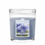 NEW! - Morning Dew 8 oz. Oval Jar Colonial Candle | 8 oz. Oval Jar Colonial Candle