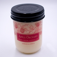 CLOSEOUT - Apples and Spice 12 oz. Swan Creek Autumn Traditions Jar Candle
