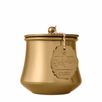 CLOSEOUT - Cinnamon Beignet 6 oz. Holiday Tin by Aspen Bay Candles