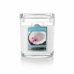 NEW! - Coconut Rain 8 oz. Oval Jar Colonial Candle | 8 oz. Oval Jar Colonial Candle