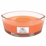 CLOSEOUT - Dreamsicle Daydream WoodWick Candle 16 oz. HearthWick Flame | Discontinued & Seasonal WoodWick Items!