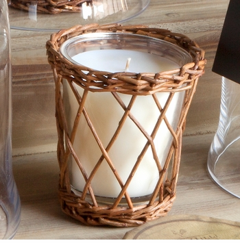 NEW! - Heirloom Pumpkin Willow Candle by Park Hill Collection