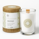 Illuminate (Juniper Rosewood) Seeking Balance 6.5 oz. Candle by Root | Seeking Balance Spa Candles by Root