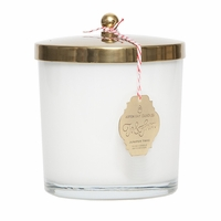NEW! - Juniper Twig 13 oz. Holiday Jar Candle by Aspen Bay Candles