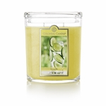 CLOSEOUT - Limeade 22 oz. Oval Jar Colonial Candle | Colonial Candle Closeouts