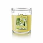 CLOSEOUT - Limeade 8 oz. Oval Jar Colonial Candle | Colonial Candle Closeouts