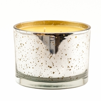 CLOSEOUT - *Mulled Cider 16 oz. Stature Platinum on Gold Reflective Tyler Candle