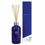 NEW! - No. 42 Cactus Flower Reed Diffuser by Capri Blue | Closeouts by Capri Blue