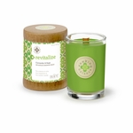 Revitalize (Coriander & Sage) Seeking Balance 6.5 oz. Candle by Root | Seeking Balance Spa Candles by Root