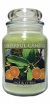 Sage & Citrus 24 oz. Cheerful Candle by A Cheerful Giver | Cheerful Candle 24 oz. Jars by A Cheerful Giver