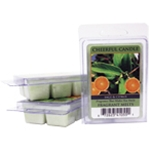 Sage & Citrus Cheerful Candle Fragrance Melt by A Cheerful Giver | Cheerful Candle Fragrance Melts by A Cheerful Giver