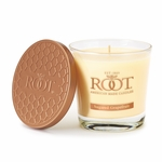 Sugared Grapefruit 6.3 oz. Small Honeycomb Veriglass Candle by Root | Small Honeycomb Veriglass Candles by Root
