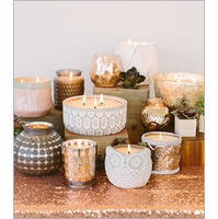 Sweet Grace Collection - Bridgewater