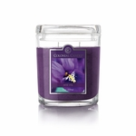 NEW! - Wild Iris 8 oz. Oval Jar Colonial Candle | 8 oz. Oval Jar Colonial Candle