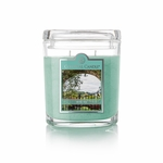 CLOSEOUT - Wild Ivy 8 oz. Oval Jar Colonial Candle | Colonial Candle Closeouts