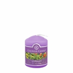 CLOSEOUT - Wildflowers 1.7 oz. Votive Colonial Candle | Colonial Candle Closeouts