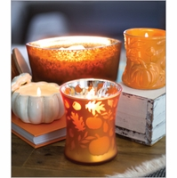 NEW - WoodWick Fall Specialty Collection