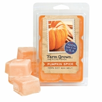 CLOSEOUT - Pumpkin Spice Farm Grown Wax Melt
