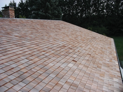 Shingle Roof Coating