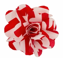 Lapel Flower . Red and White Stripes