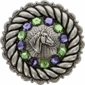 FA4832 LASRP Antique Silver Horse Head Concho with Tanzanite & Peridot Rhinestones