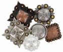 Large Conchos (2'' and up)