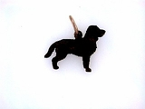 American Water Spaniel C384R/Rhodium Color (RG)