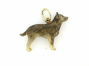 Australian Cattle Dog C105AY/Rhodium