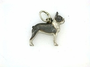 Boston Terrier C260W/Rhodium (WG)