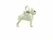 Boston Terrier C421W/Wings/Rhodium E&N (WG)
