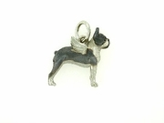Boston Terrier C421W/Wings/Rhodium (WG)