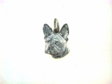 Boston Terrier Head C591W