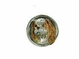Cavalier King Charles Spaniel Head/Disc Rhodium Color on Silver Ring