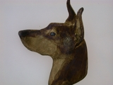 Doberman Head C606Y/Rhodium Color