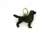 Flat-Coated Retriever C243Y/Rhodium Black