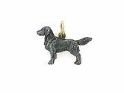 Flat-Coated Retriever C536Y/Rhodium Black