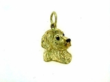 Golden Retriever C483Y Head/Rhodium E&N