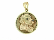 Golden Retriever C484Y Head/Disc Rhodium E&N
