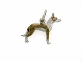 Ibizan Hound C391W Short haired/Rhodium Color (WG)