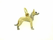 Ibizan Hound C391Y Short haired/Rhodium