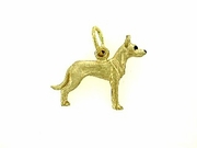 Ibizan Hound C391Y Short haired/Rhodium E&N