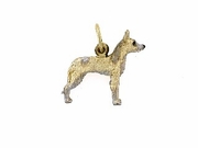 Ibizan Hound C402Y Wire-haired/Rhodium White