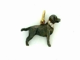Labrador Black C040Y Field Retriever/Rhodium & 8-White D Collar
