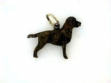 Labrador Chocolate C171Y Field Retriever/Rhodium Color