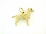 Labrador Yellow C124Y Field Retriever/Rhodium E&N