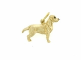 Labrador Yellow C291Y English Retriever/Rhodium E&N
