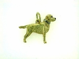 Labrador Yellow C476Y Field Retriever/Collar Rhodium E&N