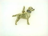 Labrador Yellow C477Y Field Retriever/Collar Rhodium E&N & 8-White D Collar