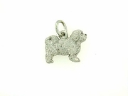 Maltese C427W Puppy Cut/Rhodium E&N (WG)
